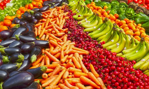 The Epidemic of Food Waste